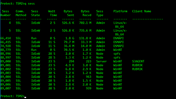 Spectrum Protect Console Output